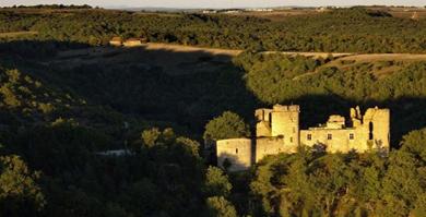 Château de Roussillon